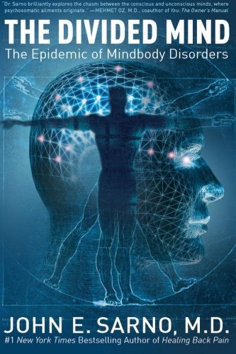 The Divided Mind: The Epidemic of Mindbody Disorders